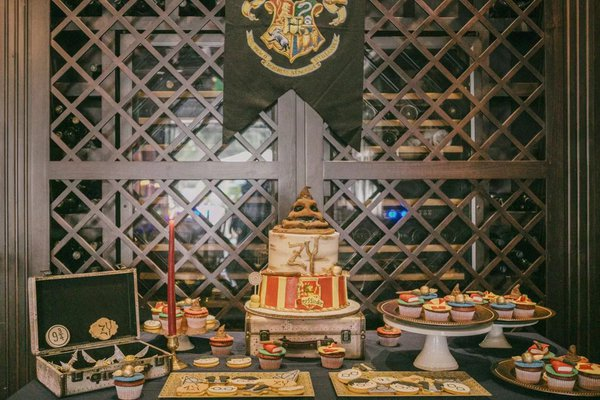 Harry Potter Private Party cover photo