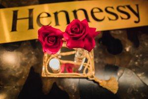 Hennessy Holiday Party 2018 photo 1556299719090_20181210_tinsel%20hennessy_0031.JPG