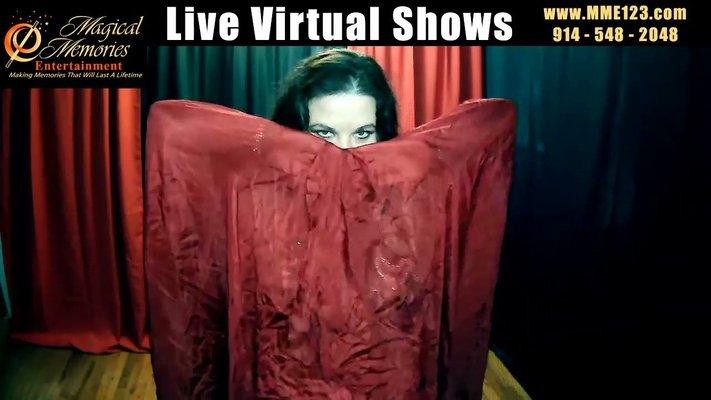Virtual Dance Shows: FREE Virtual Belly Dance Show by Lorenda LIVE at 1pm est _Trim 2_Moment.jpg