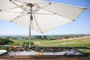 ILEA NSC at Artesa Winery photo Artesa-ILEA-Misti-Layne_030.jpg