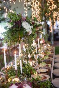 Liz & Mike's Wedding photo IMG_9717.jpg