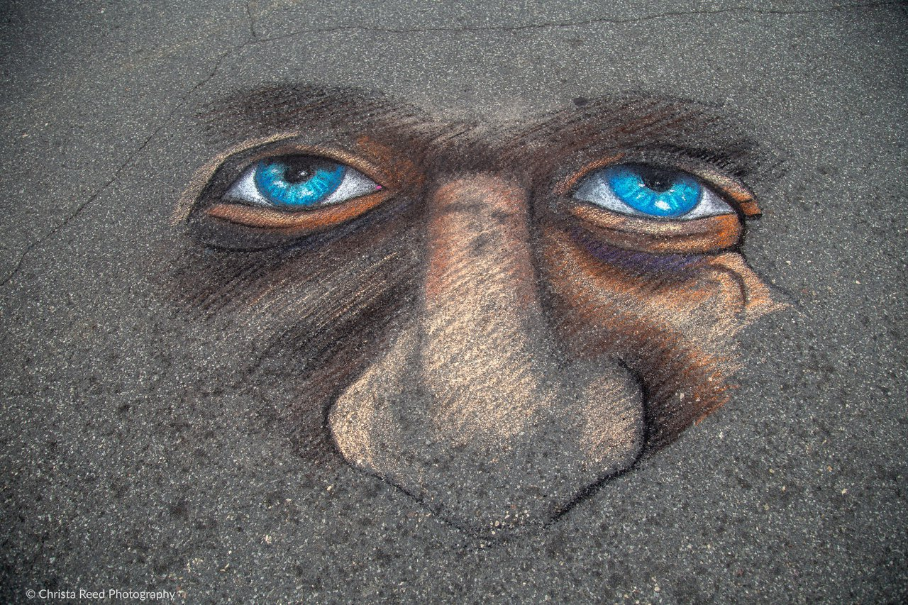 ChalkFest photo Chalkfest PL 2019 © Christa Reed-17.jpg
