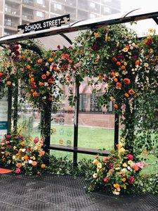 BosBRT Flowerbomb photo 2C09E0C0-3272-4A4E-BBFE-991E04A791D4.jpg