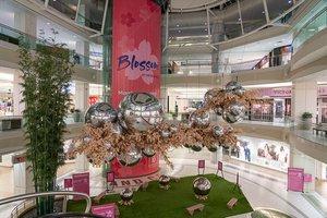 Blossom at Metropolis photo Metropolis_Blossom_BZC7278_web.jpg