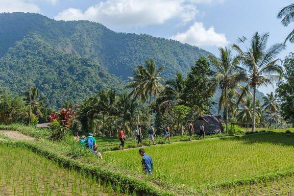 Bali Yoga Retreat cover photo
