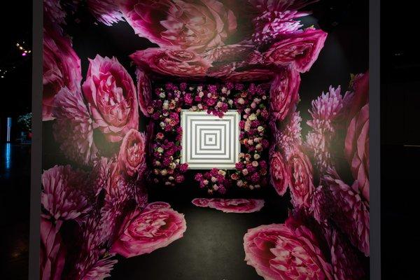 LuLaRoe VISION'19 cover photo