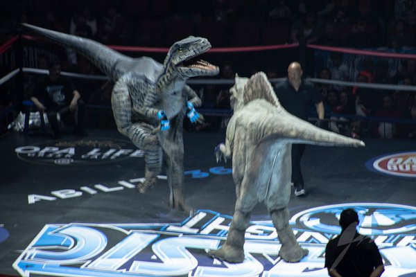 Jurassic Fight Night cover photo
