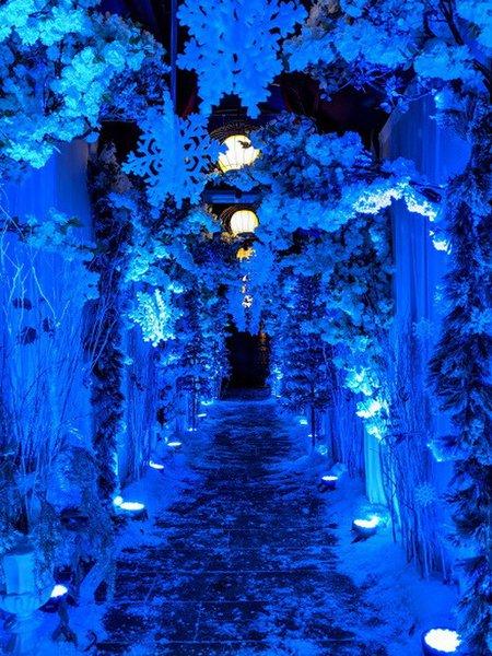 Citadel Winter Wonderland cover photo