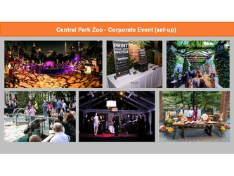 An Evening at the Central Park Zoo