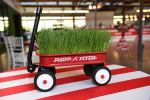 Radio Flyer 100th Anniversary Party photo RadioFlyer100_Carasco Photo_0009.jpg