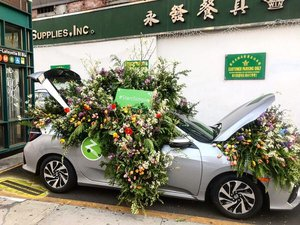 Zipcar Earth Day Flower Flash photo 469154AD-5A9B-40D0-A84A-2CA10BB654CF.jpg