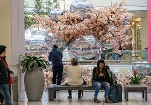 Blossom at Metropolis photo Metropolis_Blossom_BZC7203_web.jpg