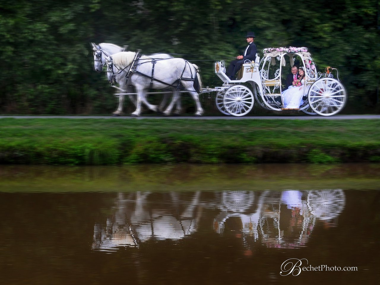 The Shenandoah Carriage Company photo shenendoah carrage.jpg