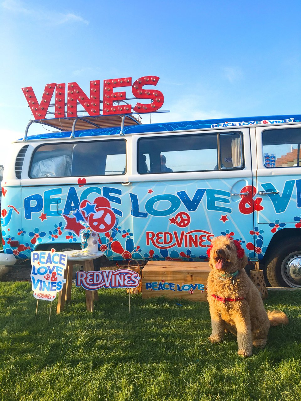 Peace, Love & Vines Tour photo Red Vines with Pup Pic.jpg