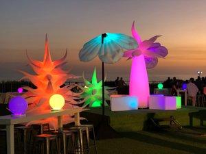 Illumination Garden photo IMG_8234.jpg