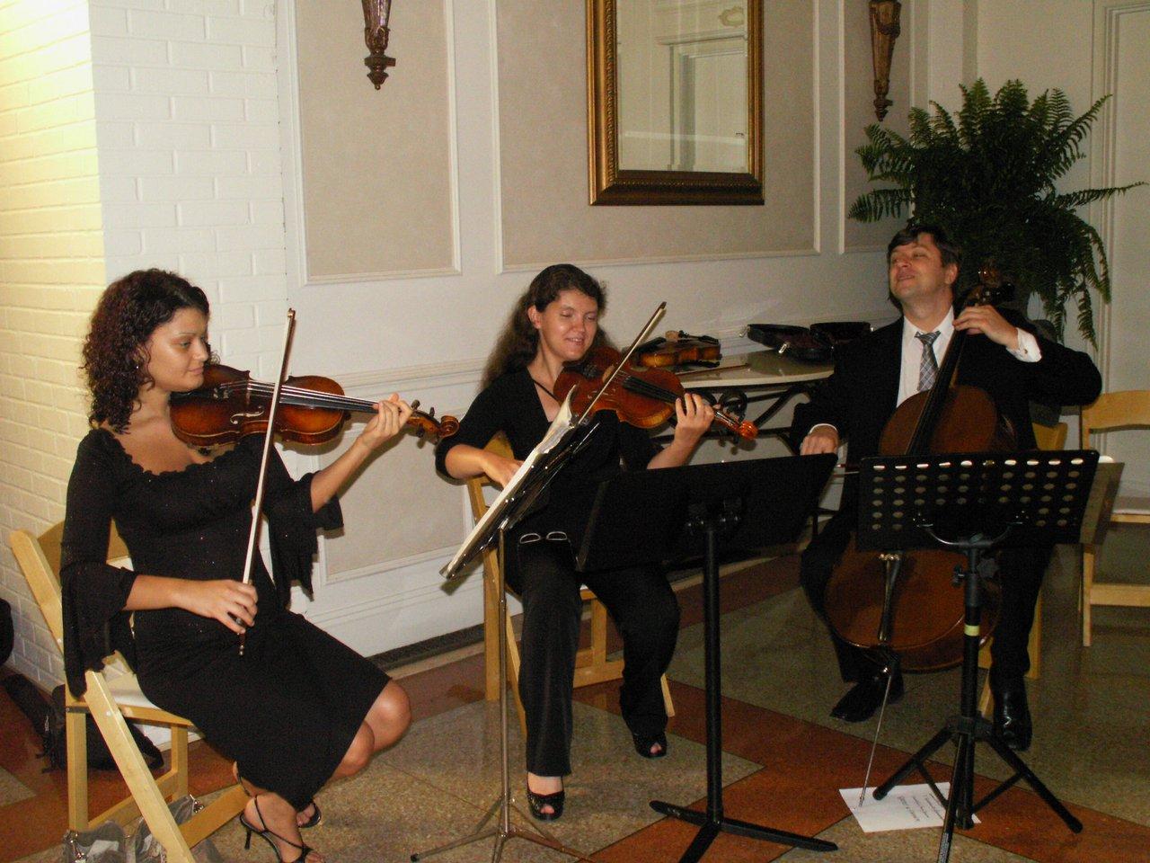 Trend Movement photo String Trio.jpg