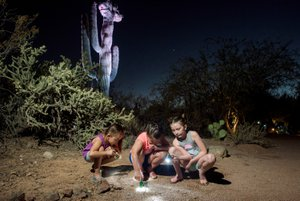 Desert Botanical Garden Flashlight Tour photo Flashlight2018_111.jpg