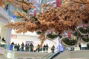 Blossom at Metropolis photo Metropolis_Blossom_BZC6806_web.jpg