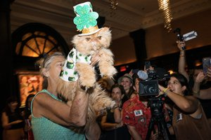 The Algonquin Cat's Cat Fashion Show photo _MED0022_port.jpg
