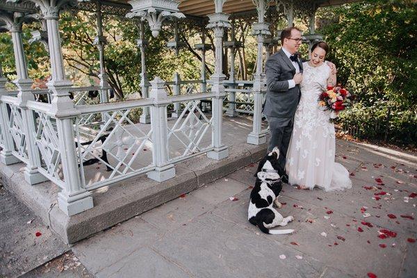 Festive Fall Wedding cover photo