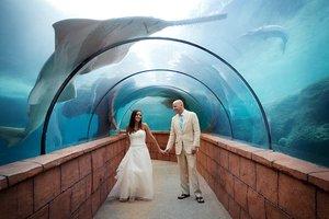 Cory & Jen's Wedding photo IMG_4288-copy-copy.jpg
