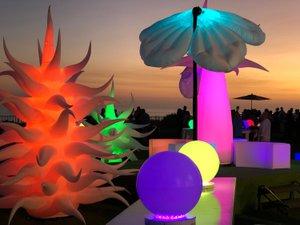 Illumination Garden photo IMG_8230.jpg
