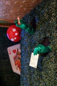 Down the Rabbit Hole photo FilipWolak_MP-Xmas-Setups_0301_3674 (1).jpg