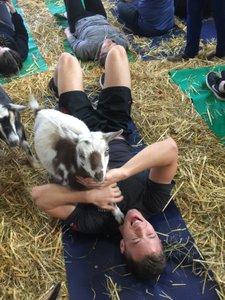 Original Goat Yoga Team Building photo IMG_1250.jpg