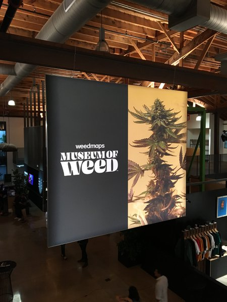 Weedmaps Museum of Weed cover photo