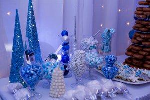 Winter Wonderland Holiday Party photo Garnet Ford-26.jpg