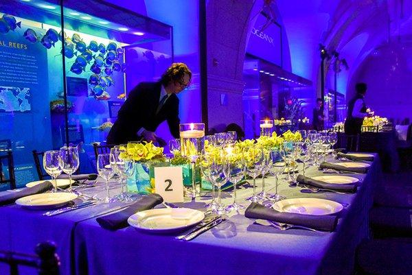 Dalio Foundation Private Event  cover photo