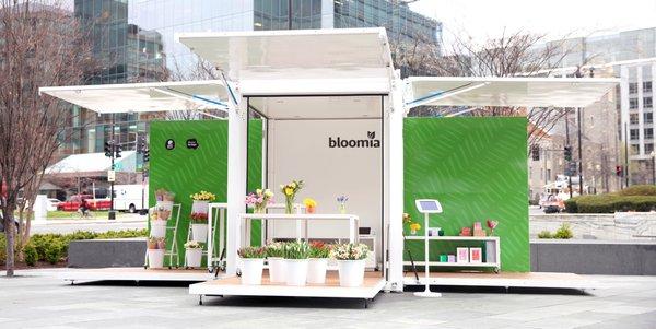 Bloomia Market cover photo