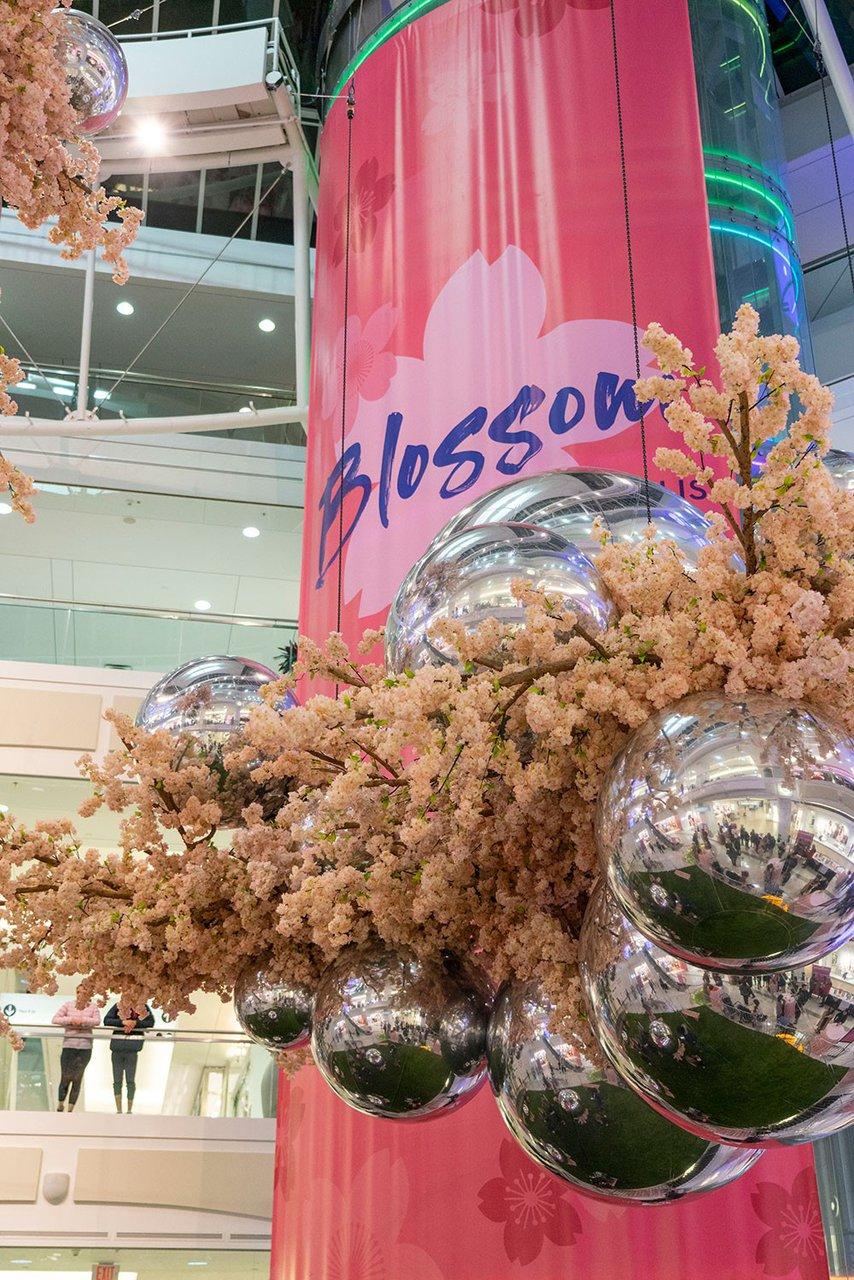 Blossom at Metropolis photo Metropolis_Blossom_BZC6797_web.jpg