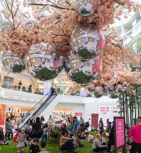 Blossom at Metropolis photo Metropolis_Blossom_BZC6973_web.jpg