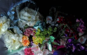 High Concept Neoteric Wedding photo IMG_3661.jpg