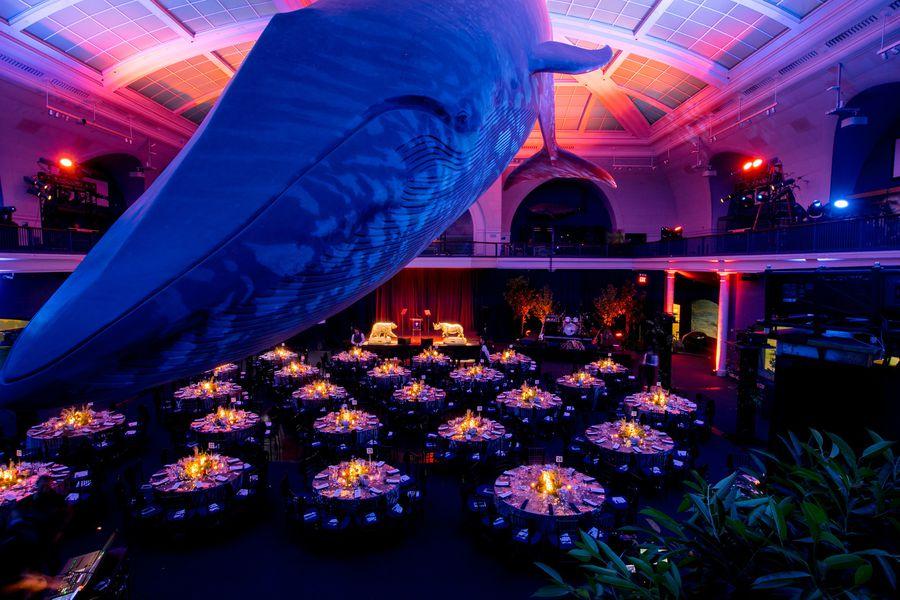 NFWF Annual Gala