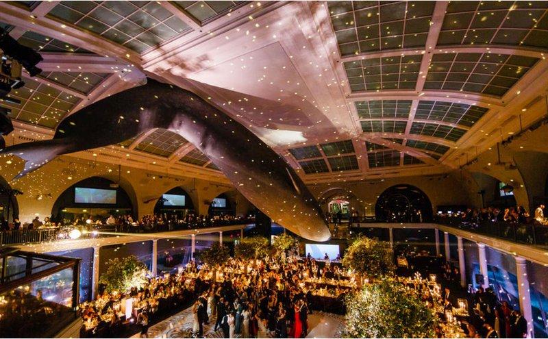 Milstein Hall of Ocean Life space photo