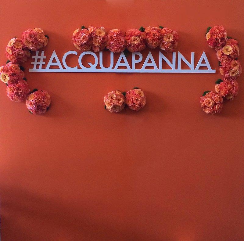 Acqua Panna PR Launch Party cover photo
