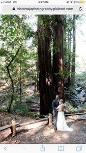 Wedding in the Woods photo FC074C0B-0B6B-4ABF-81B4-23E37B3CB912.jpg