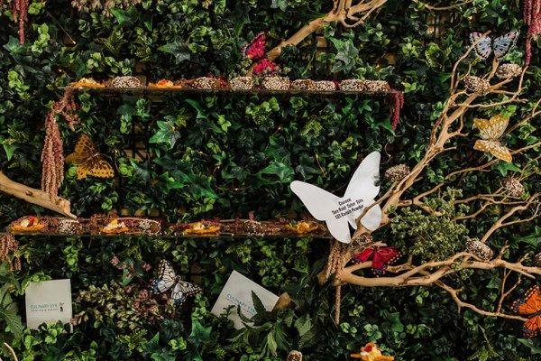 Secret Garden Gala cover photo
