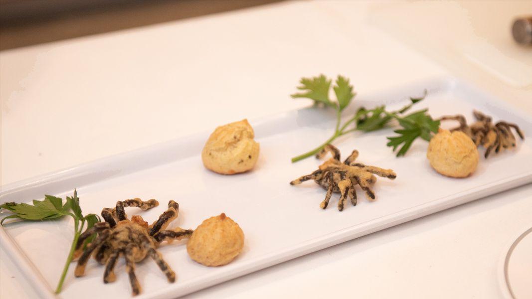 Smithsonian Channel Bug Bites