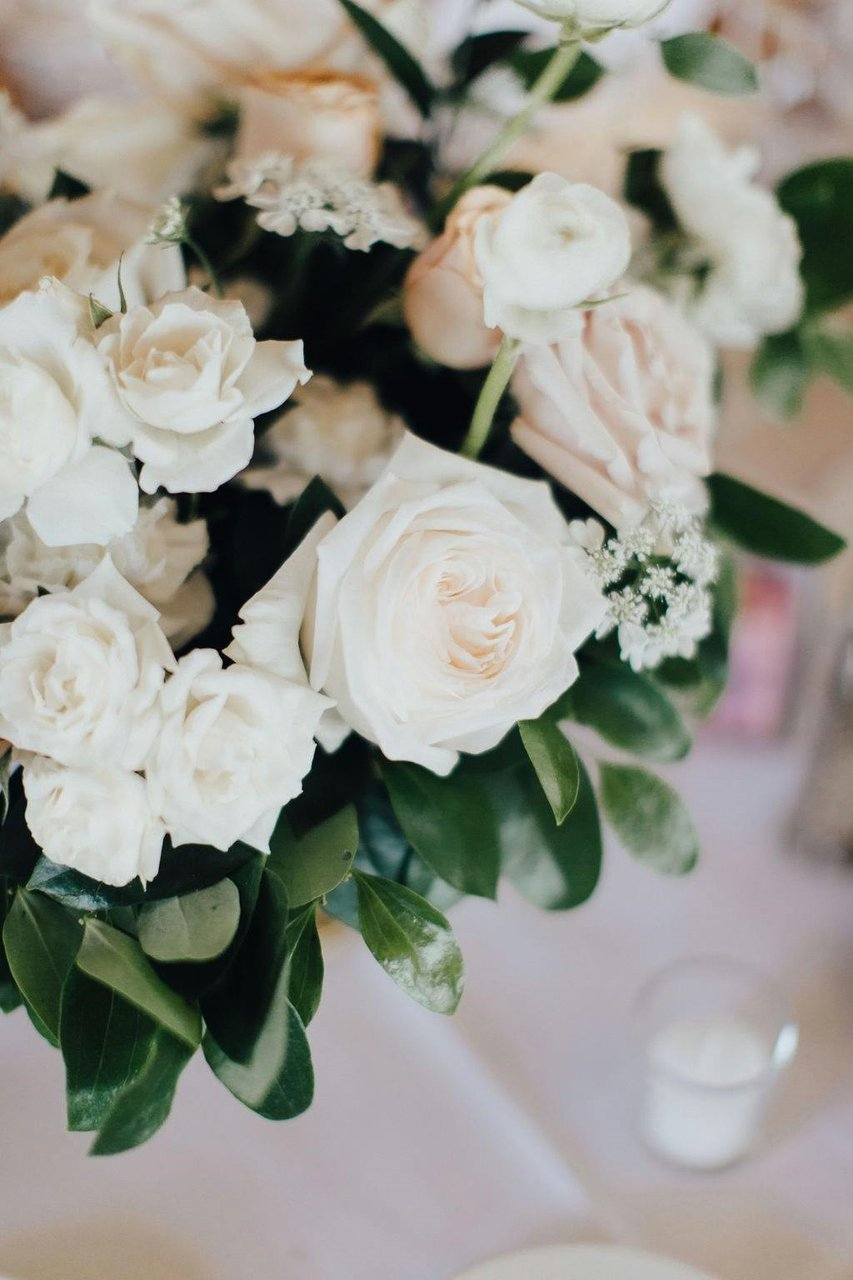 Marisa & Josh's Wedding photo 70680985_2425790354403643_1944173030217351168_o.jpg