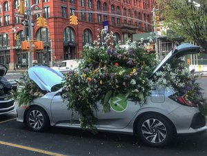 Zipcar Earth Day Flower Flash photo 98C7B0B4-499A-41AA-B7C4-929D271457DA.jpg
