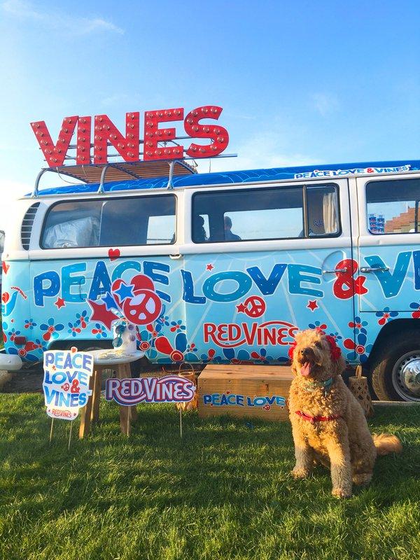 Peace, Love & Vines Tour
