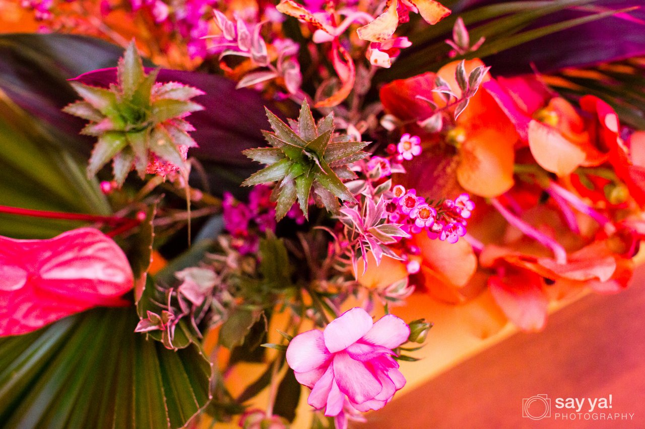 Confluent Party photo 20190130 - Say Ya! Photography - 0016.jpg