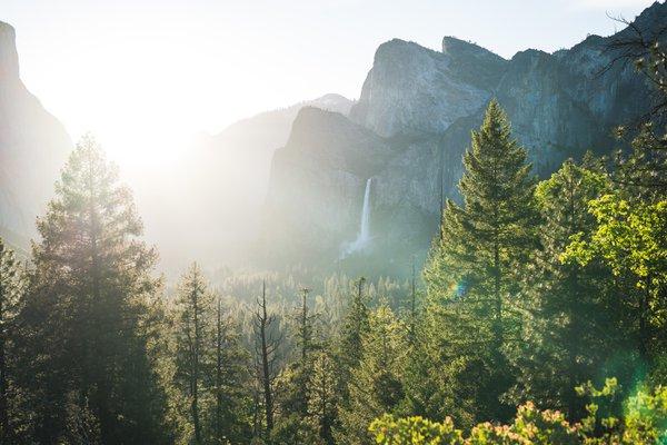 Yosemite Corporate Retreat