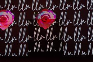 LuLaRoe VISION'19 photo Lularoe Vision 2019-208.jpg