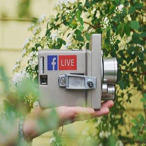 Digital Marketing with BL Digital  photo sticker-mule-cPSroMqTRQg-unsplash.jpg