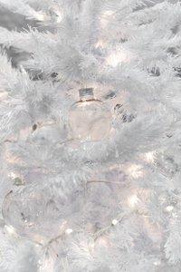 Winter Wonderland photo FilipWolak_GroupM-HolidayParty_0045_4692.jpg