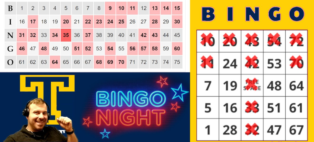 Virtual Video BINGO: Bingo Steve.jpg